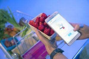 scanning-strawberries